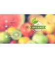 Organic food web interface blurred design vector image vector image