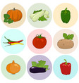 round colored icons fresh vegetables vector image