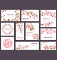 sakura blossom cherry greeting cards with vector image vector image