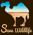 Save wildlife theme with camel and desert vector image vector image