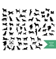 The big set of dog breeds silhouettes vector image vector image