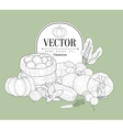 Vegetables Collection Vintage Sketch vector image