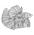 Betta Fish Zenart Stylized vector image