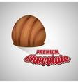 Chocolate design sweet icon dessert concept vector image