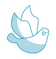 cute dove flying icon vector image
