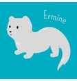 Ermine isolated Child fun icon vector image vector image