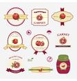 Garnet set of label design vector image vector image