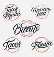 mexican food and drink tequila tacos burrito vector image vector image