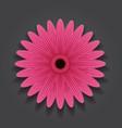 pink flower on black background image vector image vector image