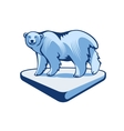 Polar Bear On The Block Of Ice vector image vector image