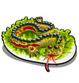 beautifully decorated salad in form a vector image vector image