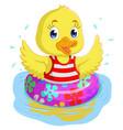 cartoon duck swimming vector image