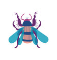 cute colorful wasp insect top view vector image vector image