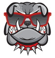 Dog with retro glasses vector image vector image