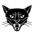 evil magic witch cat muzzle mystic alchemy vector image vector image