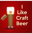 I like Craft beer vector image