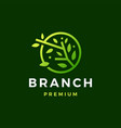 round tree branch leaf logo icon vector image