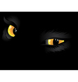 Yellow cat eyes in the dark vector image vector image