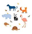 zoo wild animals flat set vector image vector image