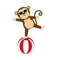 circus monkey cartoon icon vector image