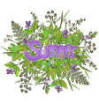 Graphic flowers and herbs with text Summer vector image vector image