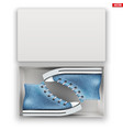 opened shoe box with gumshoes vector image