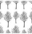 pattern young deciduous trees vector image