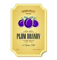 premium quality 10 years old plum brandy vector image vector image
