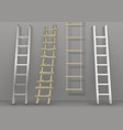 set of different ladders vector image vector image