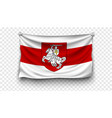 set wave belarus flags all countries vector image