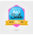 big sale 70 off template - modern vector image