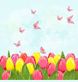 field of blooming tulips with flying butterflies vector image vector image