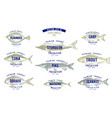 hand drawn of fish with names in vector image