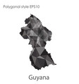 isolated icon guyana map polygonal geometric vector image vector image