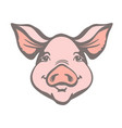 pig head farm animal pink graphic vector image vector image
