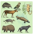set australian animals engraved hand drawn vector image