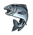 chinook salmon fish in hand drawn style vector image vector image