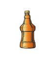 hand drawn color embossed bottle of beer vector image vector image