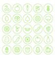 Line Circle Fresh Fruit Vegetable Icons Set vector image vector image