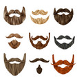 realistic beards and mustache set vector image