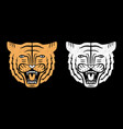 set of tiger faces vintage design of roaring vector image vector image
