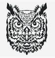 owl mascot head character vector image