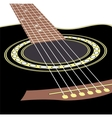 acoustic guitars vector image