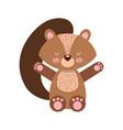animal squirrel cartoon vector image vector image
