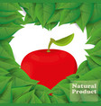Apple natural product leaves shape heart