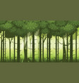 cartoon of background forest bright vector image vector image