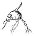 crab vintage vector image vector image