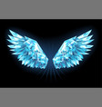 crystal ice wings vector image vector image