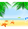 summer palm beach vector image vector image