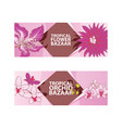 tropical flower orchid bazaar vector image vector image